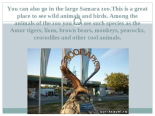 You can also go in the large Samara zoo.This is a great place to see wild ani