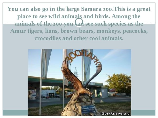 You can also go in the large Samara zoo.This is a great place to see wild ani...