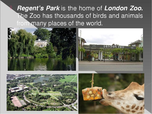 Regent's Parkis the home ofLondon Zoo. The Zoo has thousands of birds and a...