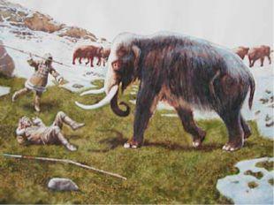 Вообразим себе африканские степи два миллиона лет назад. Львица напала на ант