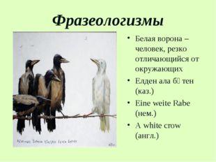 Фразеологизмы Белая ворона – человек, резко отличающийся от окружающих Елден