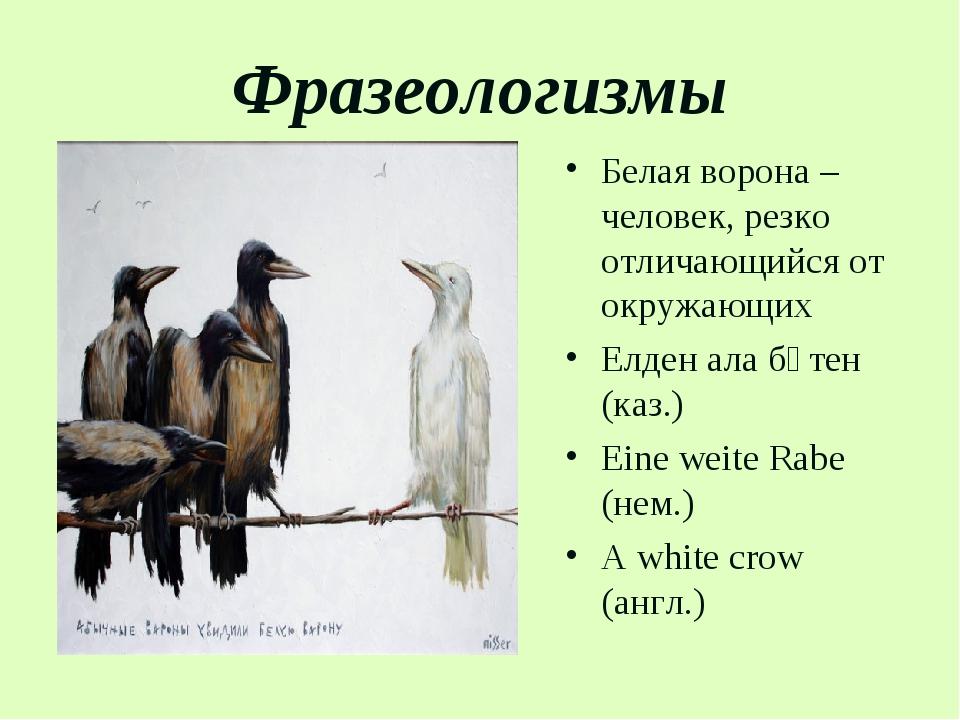 Фразеологизмы Белая ворона – человек, резко отличающийся от окружающих Елден...
