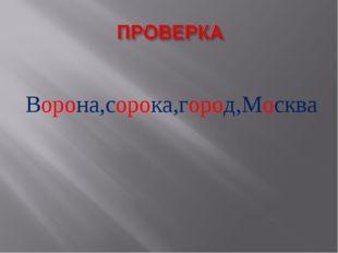 Ворона,сорока,город,Москва