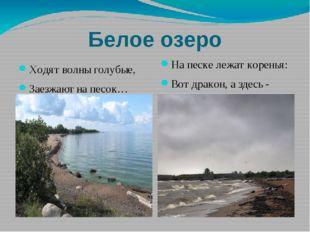 Белое озеро Ходят волны голубые, Заезжают на песок… На песке лежат коренья: В