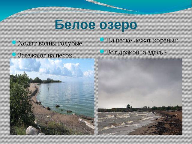 Белое озеро Ходят волны голубые, Заезжают на песок… На песке лежат коренья: В...