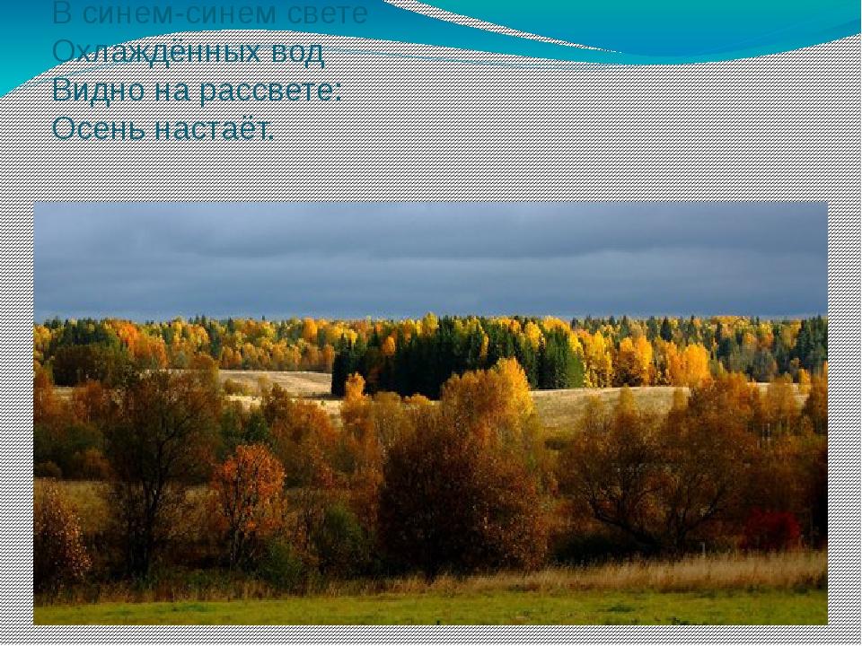 В синем-синем свете Охлаждённых вод Видно на рассвете: Осень настаёт.