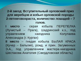 2-й заезд: Вступительный орловский приз для жеребцов и кобыл орловской породы