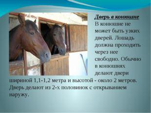 Дверь в конюшне В конюшне не может быть узких дверей. Лошадь должна проходить