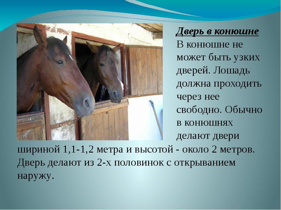 Дверь в конюшне В конюшне не может быть узких дверей. Лошадь должна проходить...