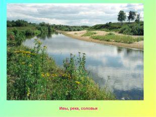 Ивы, река, соловьи