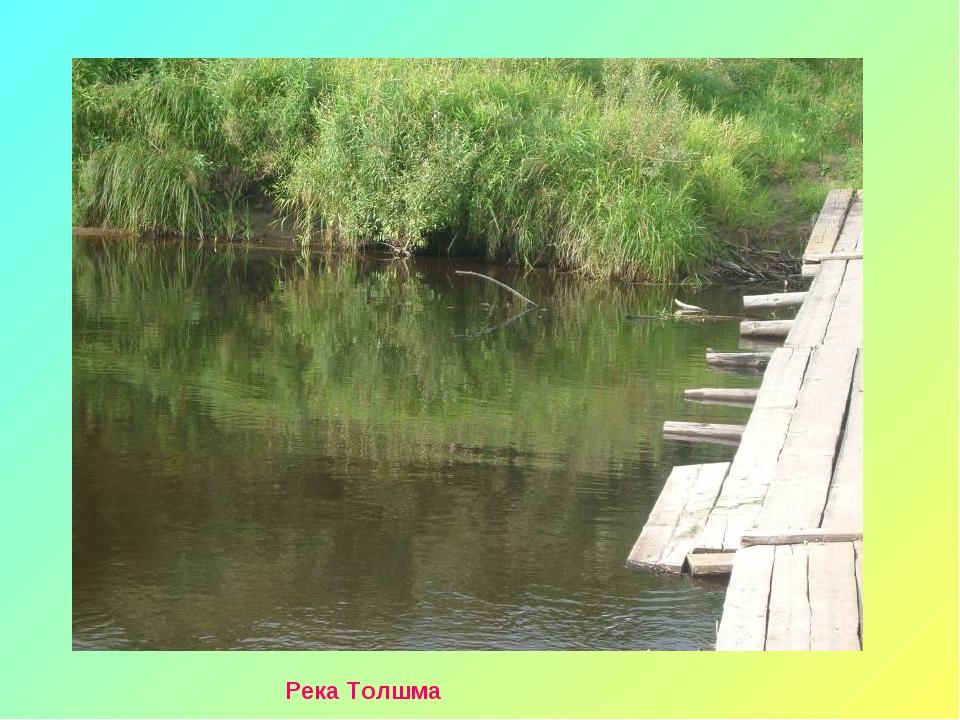 Река Толшма