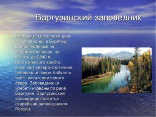 Баргузинский заповедник Баргузи́нский запове́дник — заповедник в Бурятии, ра