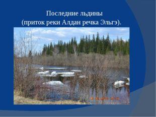 Последние льдины (приток реки Алдан речка Эльгэ).