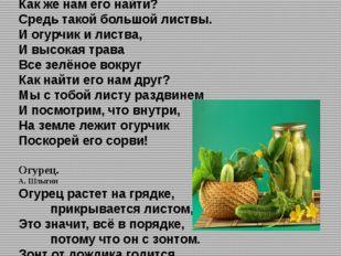 СТИХОТВОРЕНИЯ: Стихи про соленые огурцы И. Александрова Огурец растёт на гряд