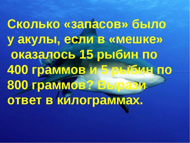 Сколько «запасов» было у акулы, если в «мешке» оказалось 15 рыбин по 400 гра...