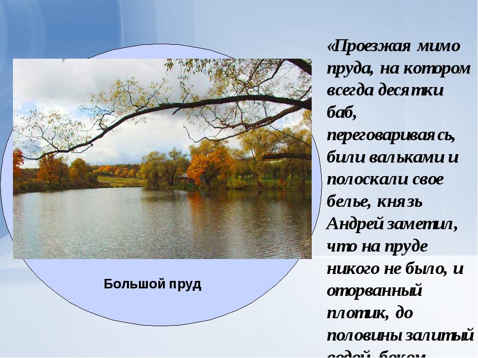 «Проезжая мимо пруда, на котором всегда десятки баб, переговариваясь, били ва...