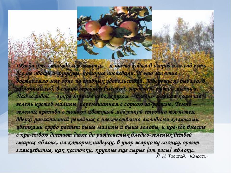 «Когда уже становилось жарко… я часто ходил в огород или сад есть все те овощ...