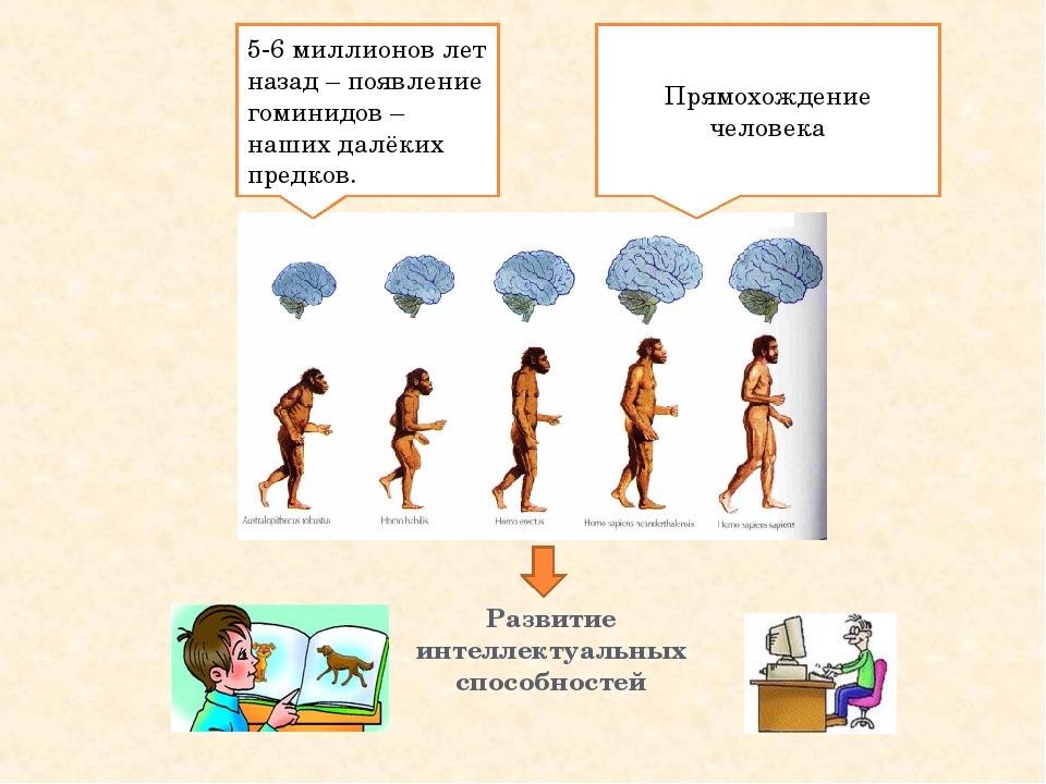 Развитие интеллектуальных способностей 5-6 миллионов лет назад – появление го...