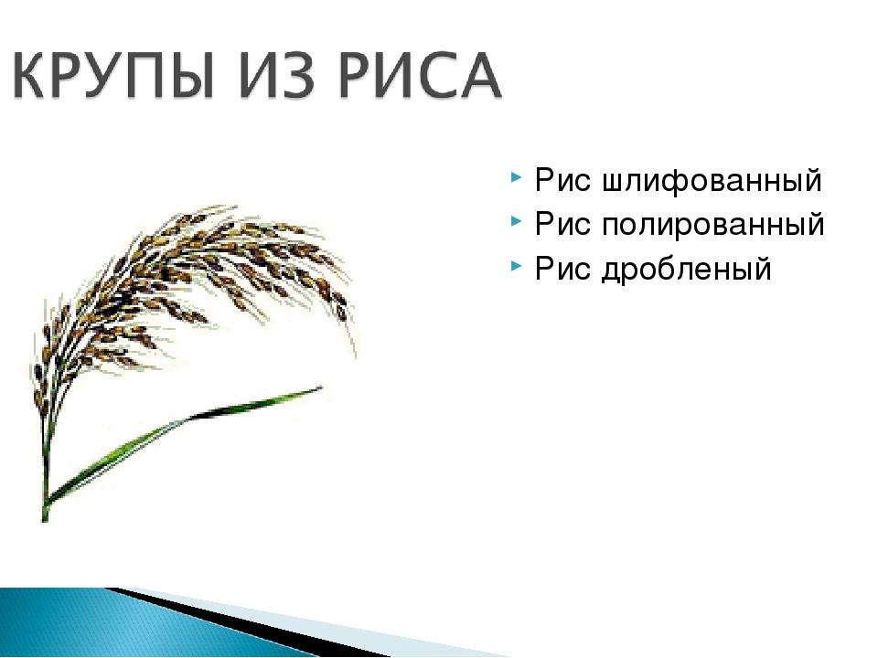Рис шлифованный Рис полированный Рис дробленый