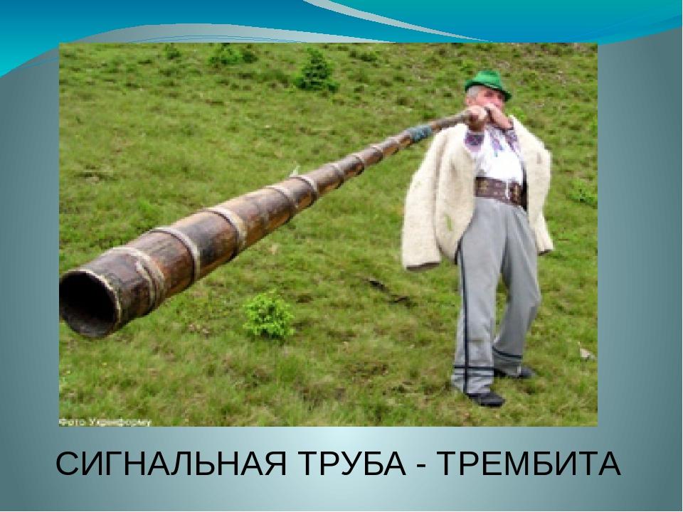 СИГНАЛЬНАЯ ТРУБА - ТРЕМБИТА
