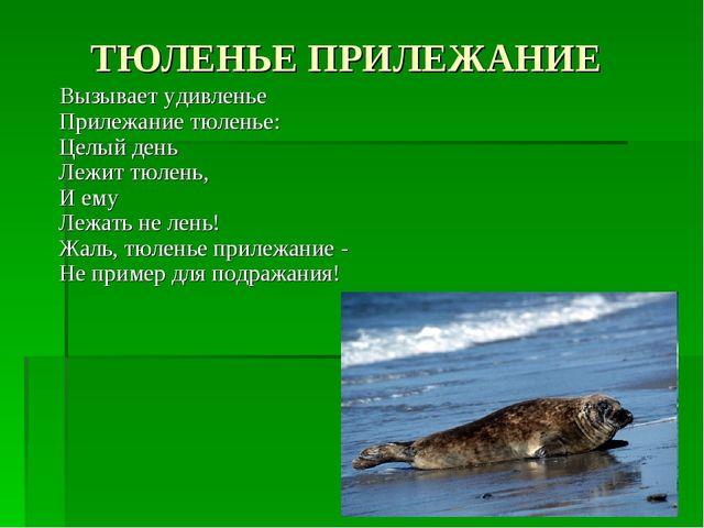 ТЮЛЕНЬЕ ПРИЛЕЖАНИЕ Вызывает удивленье Прилежание тюленье: Целый день Лежит тю...