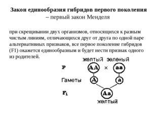 Закон единообразия гибридов первого поколения – первый закон Менделя при скре