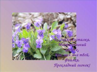 Весенняя весталка, Мечтательный цветок, Как мил мне твой, фиалка, Прохладный