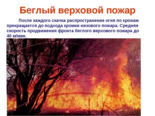 Беглый верховой пожар После каждого скачка распространение огня по кронам пре