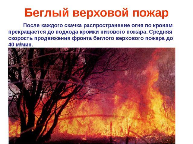 Беглый верховой пожар После каждого скачка распространение огня по кронам пре...