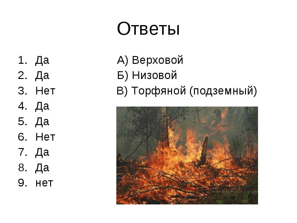 Ответы Да А) Верховой Да Б) Низовой Нет В) Торфяной (подземный) Да Да Нет Да...