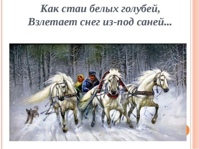 Как стаи белых голубей, Взлетает снег из-под саней...