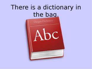 There is a dictionary in the bag.