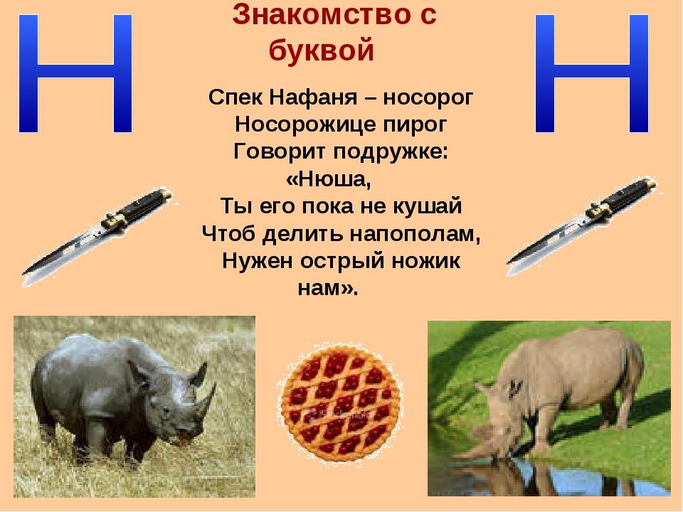 Знакомство с буквой Спек Нафаня – носорог Носорожице пирог Говорит подружке:...