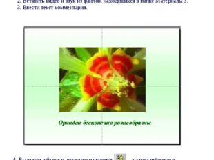 Практическая работа № 3 Мастер презентаций PowerPoint Вставка видео и звука.