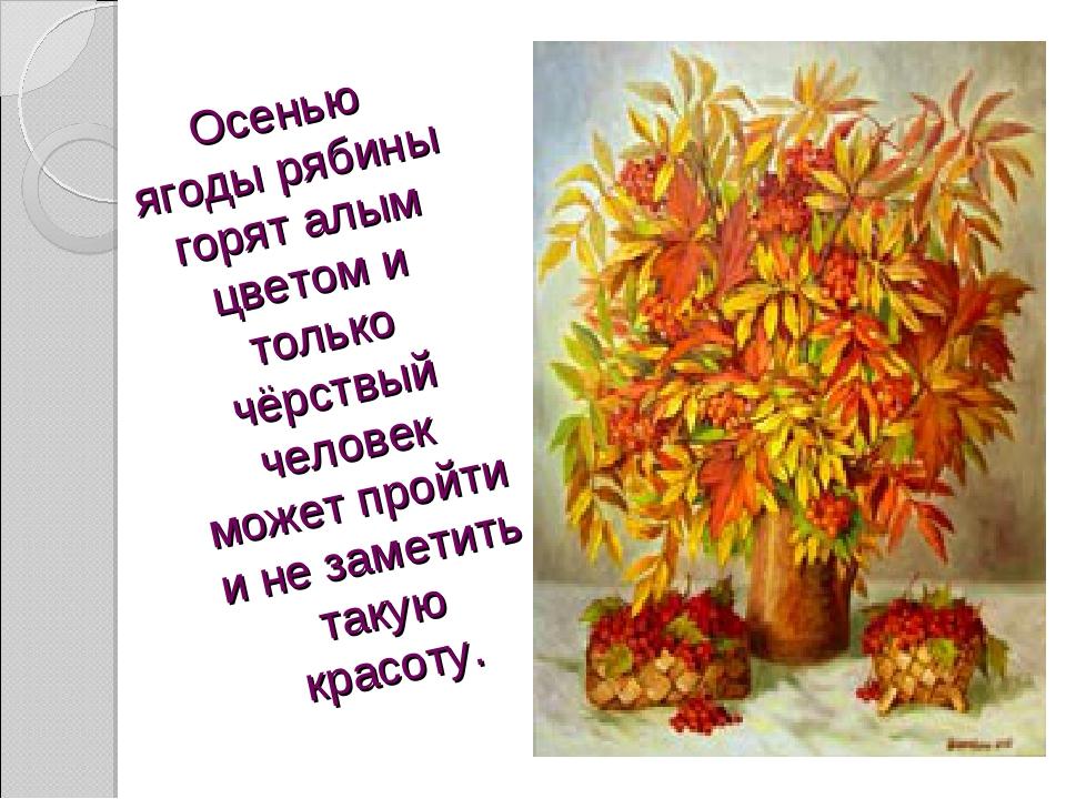 Осенью ягоды рябины горят алым цветом и только чёрствый человек может пройти...