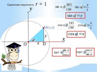 x Единичная окружность r = 1 y O x y D M(x;y)