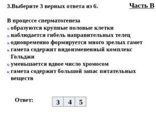 3.Выберите 3 верных ответа из 6. В процессе сперматогенеза образуются крупные