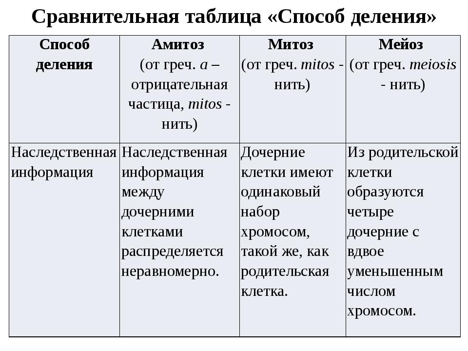 Сравнительная таблица «Способ деления» Способ деления Амитоз (от греч.a– отри...