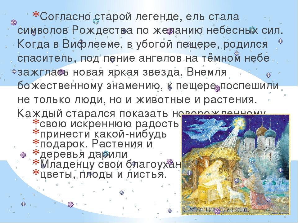 Согласно старой легенде, ель стала символов Рождества по желанию небесных сил...
