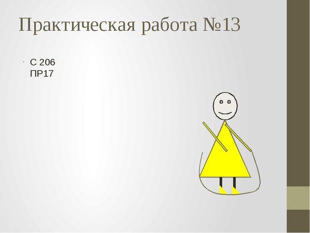 Практическая работа №13 С 206 ПР17