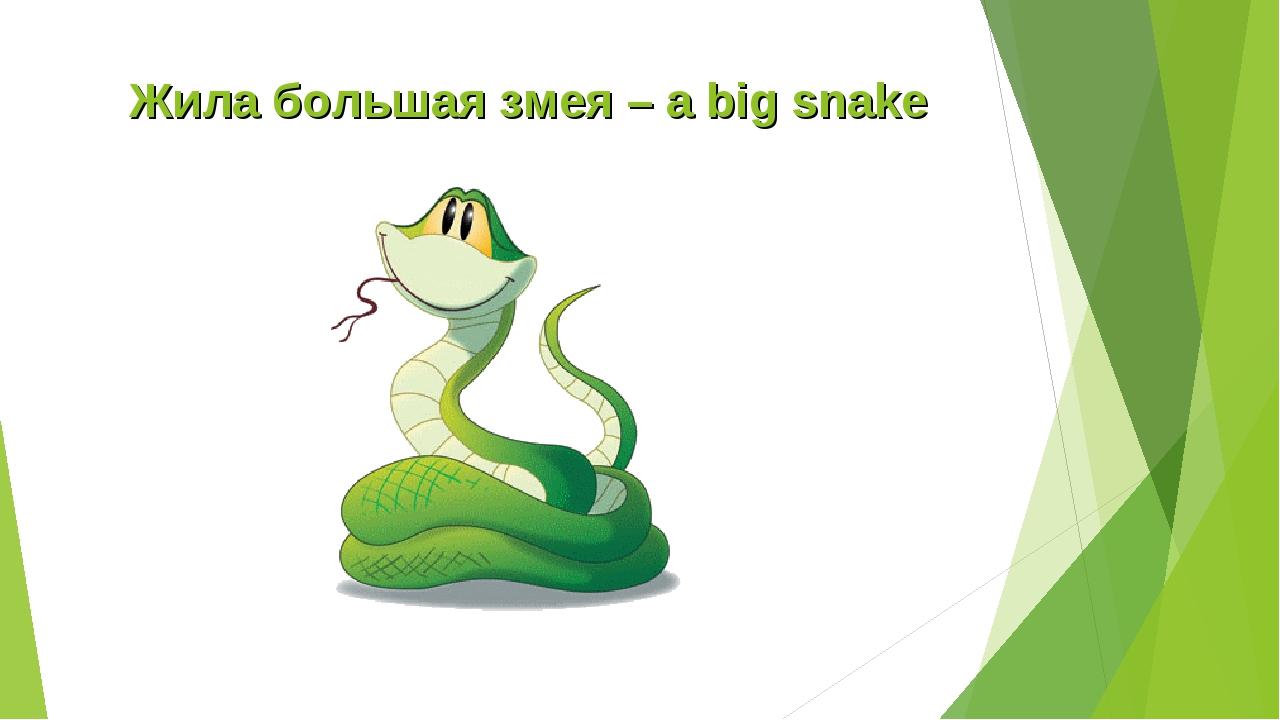 Жила большая змея – a big snake