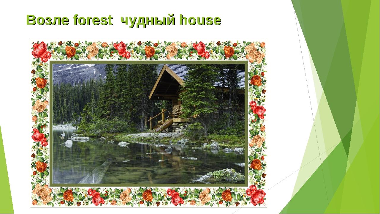 Возле forest чудный house
