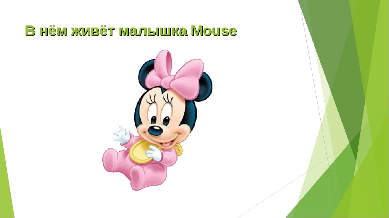 В нём живёт малышка Mouse