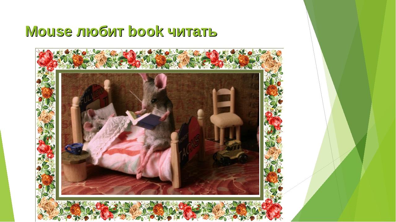 Mouse любит book читать