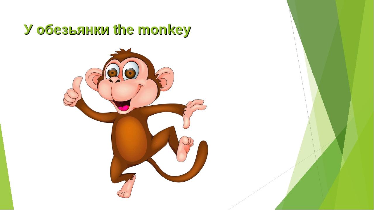 У обезьянки the monkey