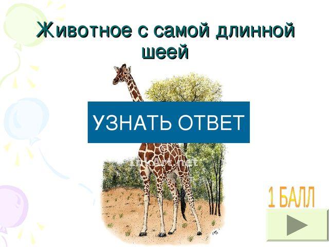 Животное с самой длинной шеей УЗНАТЬ ОТВЕТ