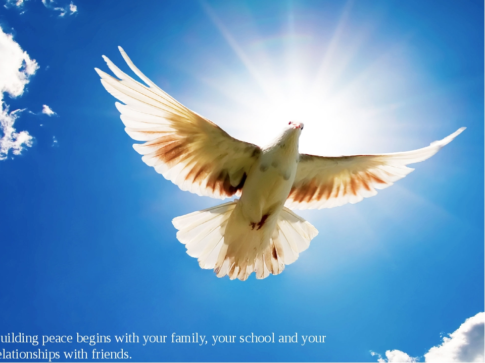 Building peace begins with your family, your school and your relationships wi...