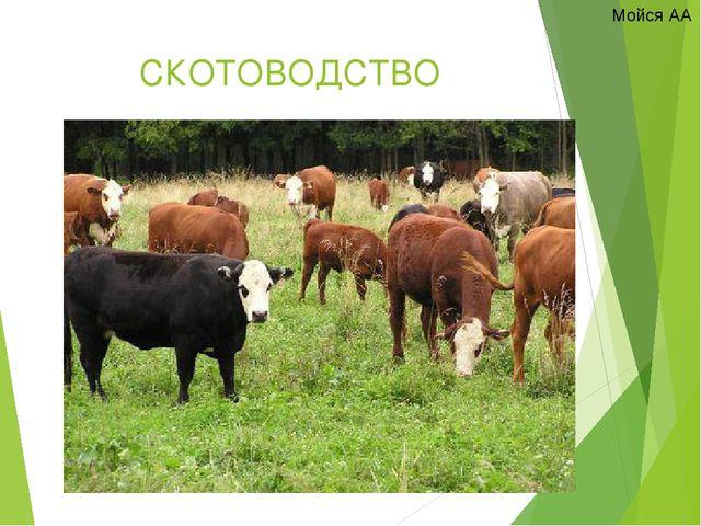 Учебник скотоводство скачать без регистрации