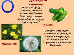 Доскажите словечко Летом в огороде- Свежие, зеленые А зимою в бочке – Желтые,