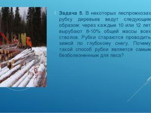 Задача 5. В некоторых леспромхозах рубку деревьев ведут следующим образом: че